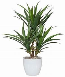 home affaire kunstpflanze 187 palme 171 online kaufen otto