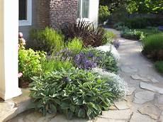Mediterranen Garten Gestalten - mediterranean garden in san anselmo ca mediterranean