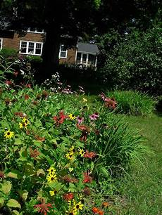 how to start a butterfly garden american butterfly association
