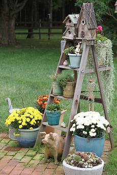 Ladder Dressed With Birdhouses Plants