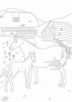 ausmalbild pferd bauernhof ausmalbilder ausmalen