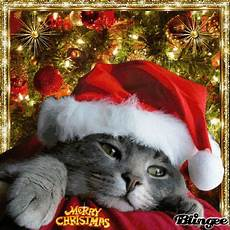 merry christmas picture 135595706 blingee com