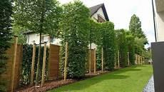 gartengestaltung sichtschutz modern sichtschutz modern cortenstahl sichtschutz latten terrasse modern rasen buesche sichtschutz