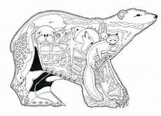 free coloring pages of alaska animals 17383 alaska critters coloring book by sue coccia
