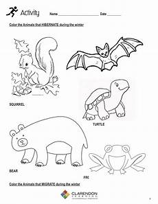 migrating animals coloring pages 17086 hibernation and migration lesson plan clarendon learning