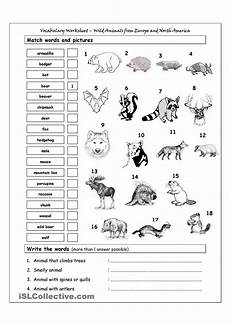 animals and their worksheets 14100 vocabulary matching worksheet animals from europe america language esl