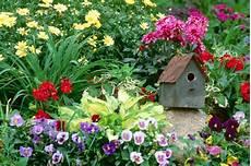 Free Desktop Wallpaper Flower Garden by Flowers Garden Massachusetts Wallpaper Allwallpaper In