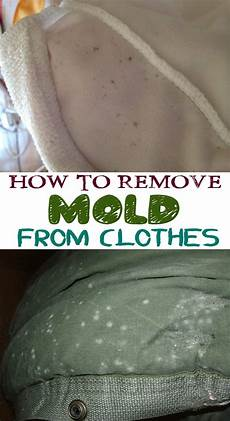 schimmel in kleidung how to remove mold from clothes secrets