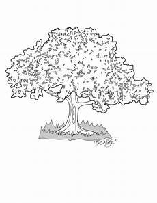 dibujos de los simbolos naturales de carabobo la ceiba miblogchapin s blog