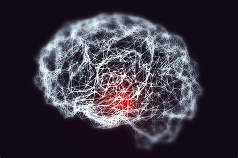 Cog Neuro