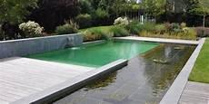 naturelle pour piscine les avantages de la piscine naturelle