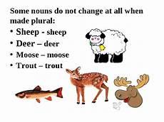 quot nouns in english quot презентація з англійської мови