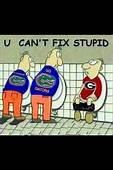 Cartoon  Florida Gators Football