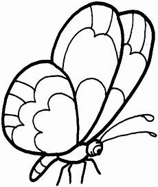 Schmetterling Malvorlagen Butterfly Coloring Pages