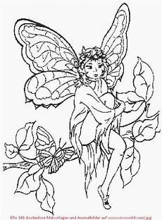 pin gubik auf fairies feen malvorlagen