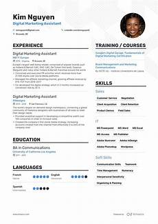 cfo resume exle and guide for 2019