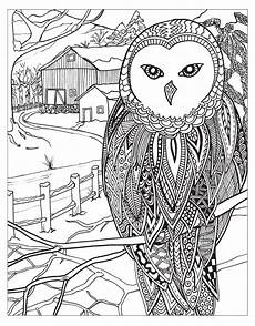 zendoodle coloring winter jodi best macmillan