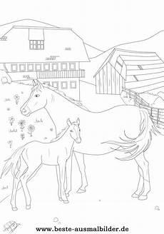 Ausmalbilder Pferde Ostwind Ostwind Ausmalbilder Zum Ausdrucken Kostenlos