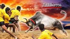 Hd Jallikattu Kaalai Wallpapers 3d