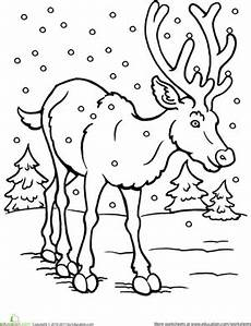 winter animals coloring pages for preschool 17197 color the reindeer worksheet education