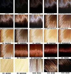 aveda hair color chart hair color wheel walk with me july 2011