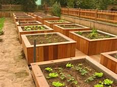 bac pour arbuste de jardin bac pour jardins