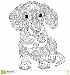 zentangle stylized dachshund dog download from over 60