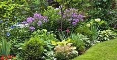 quand planter des arbustes quand planter ses arbustes persistants jardin jardin feng shui jardins et beaux jardins