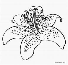 dibujos de flores para colorear p 225 ginas para imprimir gratis