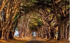 Excellent Foto Pemandangan Alam Asli 83 Dalam Inspirasi