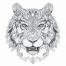 tiger ausmalbild erwachsene kinder ausmalbilder