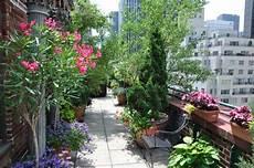 pflanzen für die dachterrasse 54 bilder mit bepflanzung f 252 r dachterrasse archzine net