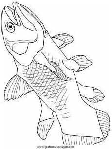 verschiedene fische 12 gratis malvorlage in fische tiere