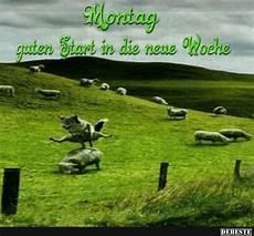 Montag Guten Start In Die Neue Woche Lustige Bilder