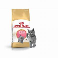 Royal Canin Kitten Shorthair - royal canin kitten shorthair croquettes pour chaton
