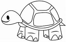 how to draw a tortoise easy and simple steps youtube