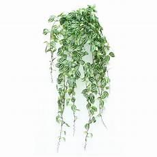 plante retombante accueil gt plantes artificielles