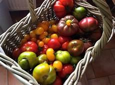 Viele Tomaten Was Damit Machen Choicegrandmother
