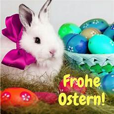 Wir W 252 Nschen Euch Frohe Ostern Bilder Hase Bunte Eier