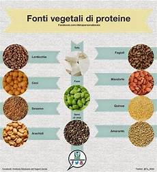 proteine vegetali alimenti ottime fonti di proteine vegetali nel 2020 proteina