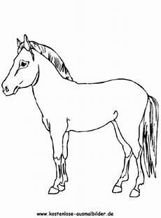 Ausmalbilder Pferde Haflinger Ausmalbild Pferd 14 Zum Ausdrucken