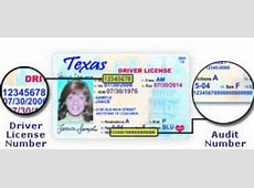 new information you need for drivers license