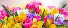 Flower Wallpaper by Beautiful Flowers Ultra Hd Desktop Background