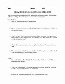 13 best images of carbohydrates worksheet answers organic molecules worksheet review answers