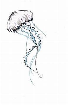jellyfish home drawings jellyfish drawing drawings
