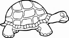 Turtle Coloring Sheet Print Turtle Coloring Pages As The