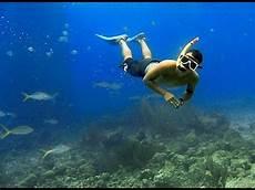 gopro guay tioman island snorkeling ever youtube