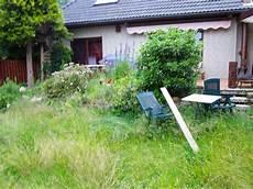 Arbeiten Rund Um Haus Und Garten Elbe Gartenbau Baum