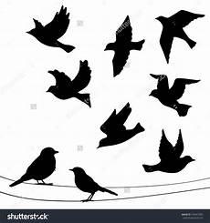 vogel silhouetten zum ausdrucken vogel silhouetten zum