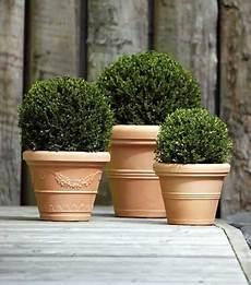 vasi in cotto toscano i migliori vasi per il tuo giardino in resina o plastica